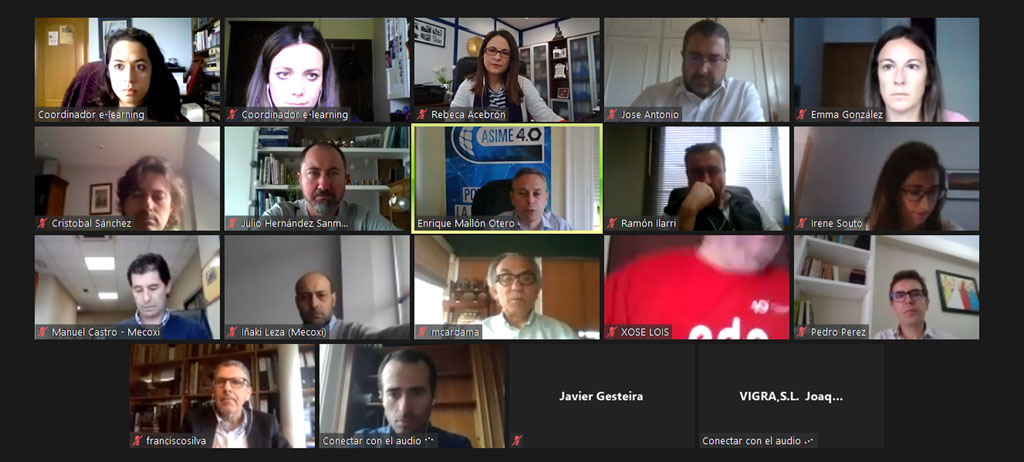 Asistentes a la reunión virtual del Galician Offshore Energy Group.